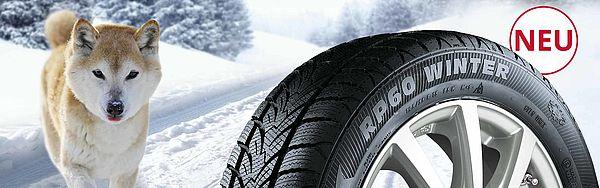 Winterreifen für PKW und SUV